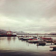 Reykjavik - le port Homemade Food, Iceland, Travelling, Coastal, Places To Visit, Wanderlust, The Unit, Recipes, Arctic