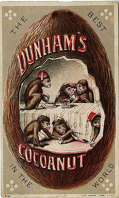 Old Trade Card Dunham's Cocoanut Monkeys Home in Shell Puzzle Dunham St Louis NY Vintage Ephemera, Vintage Ads, Binder Labels, Boston Public Library, Chinoiserie Chic, Monkey Business, Coconut, Good Things, World