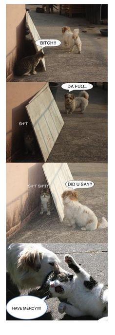 Hahaha. - http://www.youtube.com/madicalsays