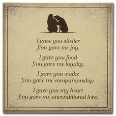 Schnauzers, I Love Dogs, Puppy Love, Game Mode, Pet Loss Grief, Dog Poems, Motivacional Quotes, Puppy Quotes, Loss Quotes