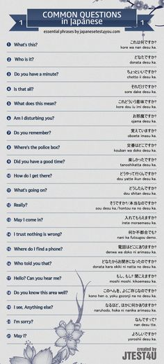 Infographic: common questions in Japanese part 1. http://japanesetest4you.com/infographic-common-questions-in-japanese-part-1/