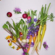 Les magnifiques légumes de Jérôme Gaudillère!! | Jean-Michel Carrette (Aux Terrasses). Archiving Food Photography | Gastronomy