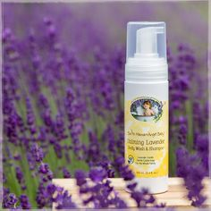 Naturally calming, organic Vanilla and Lavender essential oils make Calming Lavender Shampoo & Body Wash perfect for bath, hand washing and head-to-toe clean.