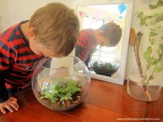reggio inspired hands on science activities for preschoolers observation table an everyday story Observing Snails Science Inquiry, Preschool Science Activities, Nature Activities, Kindergarten Science, Activities For Kids, Social Science, Reggio Classroom, Preschool Classroom, Classroom Resources