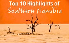 Namibia is a country which has by far some of the most spectacular scenery in Africa. It's a country of superlatives, with vast unspoiled landscapes, diverse wildlife, unique landmarks and interesting cultures. Egypt Travel, Africa Travel, Countries To Visit, Places To Visit, 7 Natural Wonders, Newborn Animals, Stuff To Do, Things To Do, Culture Travel