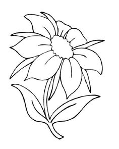 Flower coloring pages A single