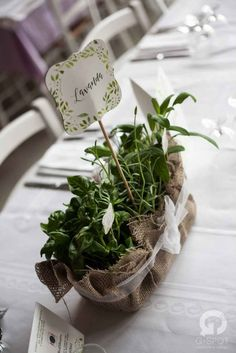 Love, paper and co. | Herbs Wedding    #Wedding Design Bologna #Lovepaperandco #gspotlabs #centerpiecies  #tablenumbers #weddingtable #eventdesign #matrimonio #lavanda #herbs