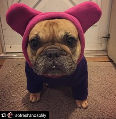 From Snorf Industries:  @sofreshandsolily 👉 It's April 4th Mother Nature, get with the program. Thank goodness I have my bathat hoodie to keep my wittle ears warm. #theneverendingwinter #snorfindustries || ##frenchie #frenchies #french #bulldog #bulldogs #frenchbulldog #frenchbulldogs #hoodie