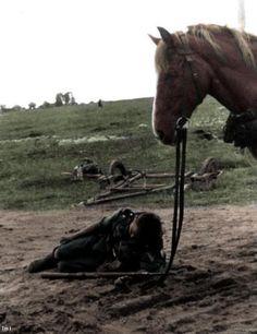 Wehrmacht cavalry sleep next to his horse in the Soviet Union