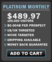 Check out http://www.websitetrafficwarehouse.com/buy-website-traffic.html to buy website traffic.You can buy web traffic for instant results and that too at attractive prices.