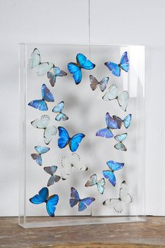 Flight of Morphos Butterflies in Lucite Case by Atelier L for Stéphane Olivier | From a unique collection of antique and modern wall-mounted sculptures at https://www.1stdibs.com/furniture/wall-decorations/wall-mounted-sculptures/