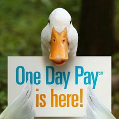 Get your claim paid in 1 day. Ask me how. Local.aflac.com/j21_brown/agent/ #jbtheaflacguy