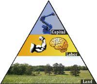 Introduction to Economics ENTIRE UNIT | Lesson Plans