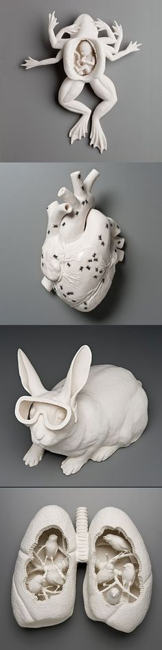From Top: The God of Change (2011), Ants Ate All My Sugar (2010), Safety (2008), and Canary 3 (2009) by Kate MacDowell