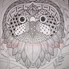 Owl complete with background #dubbybydesign #zentangle #zentangleinspiredart #owl #benkwok #ornationcreation #inkdrawing #zendoodle #doodle