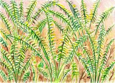 Fern Drawing  Woodland Fern Plant Fern Art   5x7 by Michelebuttons, $30.00