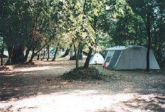 Camping La Saraillère à Goudargues