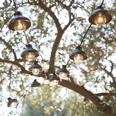 Industrial String Lights- west elm love them!