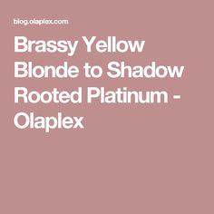 Brassy Yellow Blonde to Shadow Rooted Platinum - Olaplex