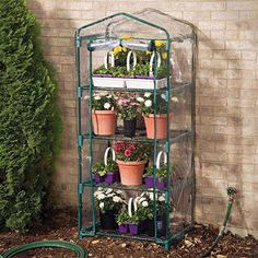 Taylor Tower Greenhouse - Hobby Greenhouse Kits