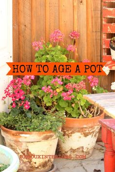 Garden Decorating with Junk ideas, Redoux Style How to get a REAL aged look on a Terra Cotta Pot. Garden Crafts, Garden Projects, Diy Crafts, Garden Ideas, Container Gardening, Gardening Tips, Decorating With Junk, Terracotta Pots, Outdoor Projects