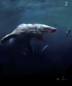 (Artist Unknown) ~Megacaetasaur~ The Megacaetasaur is an immense relative of the Caeton and the Urt shark. They were the descendants of the megalodon who were eventually classified as oddkinde for their immense size. They have ravenous appetites and roam the surface of the deep ocean, eating anything they encounter. They rarely go too deep, as they fear their natural predator, the Asheans.