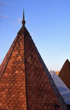 Adams Morgan Roof