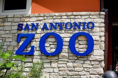 San Antonio Zoo. The first hour at the Zoo, Mark blacked out and fell forward, a terrible blow to head and eye. We spent the day at ER. When we got out, we bought sun glasses, got a wheel chair and carried on with the rest of the Arc Group.