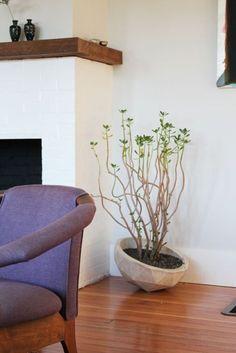 Kathleen & Bradford's Heritage of Harmony Home — House Tour   Apartment Therapy