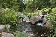 "Designing Your Dream Pond  ""It's all in the details."" How many times have you heard that quote, and who was the first to say it, anyway?"