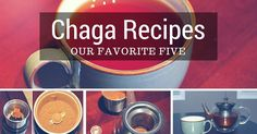 Our top five Chaga Recipes. These delicious Chaga Mushroom recipes, not only taste great, but also benefit your health. Click here to learn more.