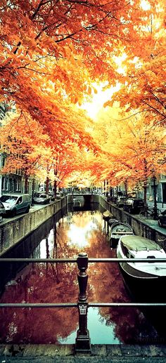 Travelling - Amsterdam