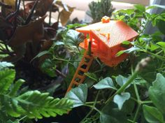 Working on a new idea of incorporating 3D printed mini tree houses to go in terrariums and planters! #guelph #terraphrase #treehouse #terrarium #planter #plants #succulents #orange #3dprinting #ladder #house #fairygarden #centerpeice #diy by terraphrase