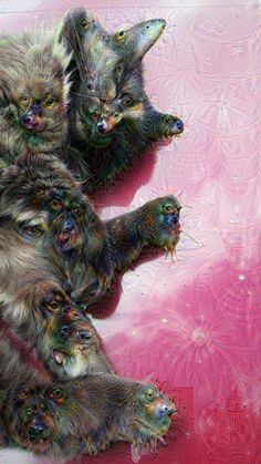 Deep Dream web interface