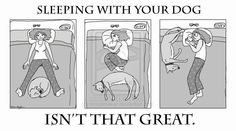 Sleeping with your dog... june bug and cookie kill me every night just about!