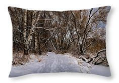 Throw pillow with winter motif for sale