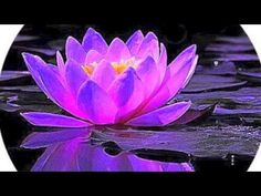 Meditation ... Receiving Messages from The Masters, Guides & Angels - YouTube