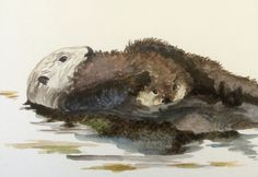 Otterly loved by mum