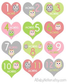 Square owl monthly iron on or sticker decal transfer pink lime green baby girl shower nursery