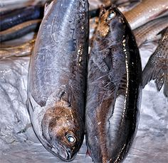 Pudin de pescado