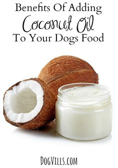 What are the benefits of adding coconut oil to your dog's food? More than you may realize! Check out our thoughts & see if it will benefit your dog!