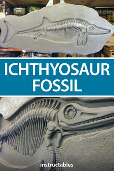 This Ichthyosaur fossil, created by rog8811, is made from wood and sprayed with PVA glue and sprinkled with sand to give it a rough rock look. #Instructables #workshop #woodworking #decor #history 12mm Plywood, Concrete Sculpture, Mini Drawings, Mish Mash, Trash To Treasure, Scroll Saw, Dremel, Wicca, Sea Shells