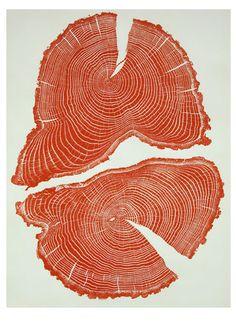 Tree cross sections make beautiful prints: http://j.mp/YkRJZh