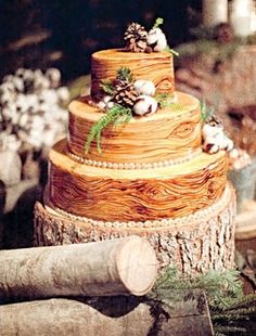 Wedding Cake of the Day: Rustic Wood Cake Wood Cake, Elegant Winter Wedding, Rustic Wedding, Wedding Ideas, Forest Wedding, Woodland Wedding, Wedding Photos, Wedding Trends, Gold Wedding