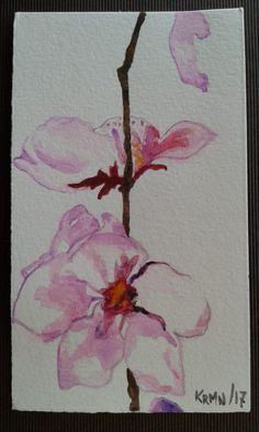 Acuarelas. Flor de cerezo. Watercolors. Cherry flowers
