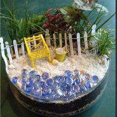 Sea shore dish garden!