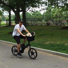 Honden mee met de Gocycle #florismoo #gocycle