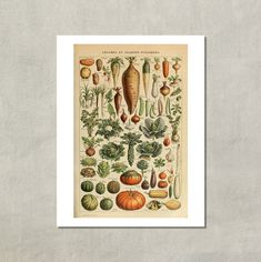 Hülsenfrüchte und Gemüse Print 1907  8.5 x 11 von TwoDovesPrinting