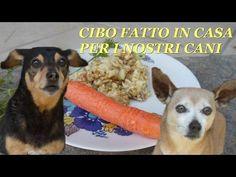 CIBO FATTO IN CASA PER I NOSTRI CANI - RIMEDI NATURALI
