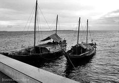 Badjao floating homes near Paseo Del Mar ♡ Zamboanga City Zamboanga City, Floating Homes, Filipino, Seas, Sailing Ships, Philippines, History, Travel, Del Mar